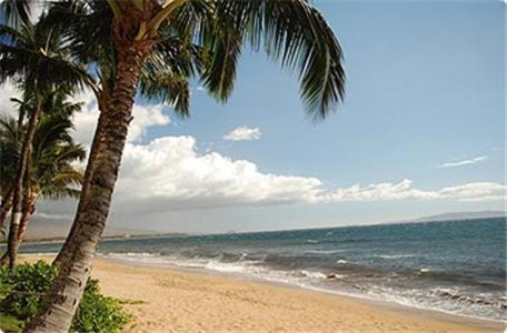 Kealia Resort By Destinations Maui Inc - Kihei, HI 96753