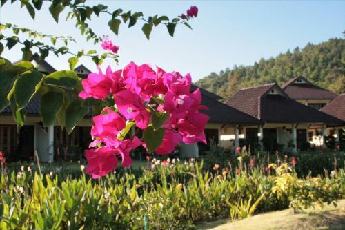 Maekok River Village