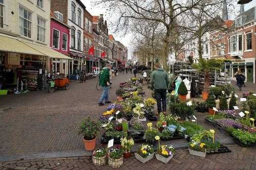 Luxury Apartments Delft Iii Flower Market