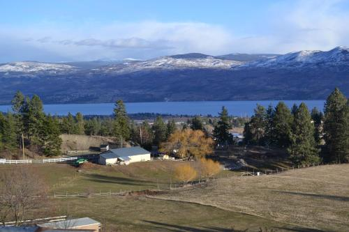Monkeys B&b - Kelowna, BC V4T 2X3