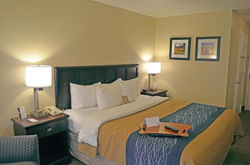 Comfort Inn Cordelia Photo