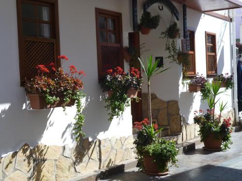 Antalya Frankfurt Hotel tatil