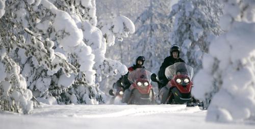 Valtakatu 18, 96200 Rovaniemi Arctic Circle, Finland.
