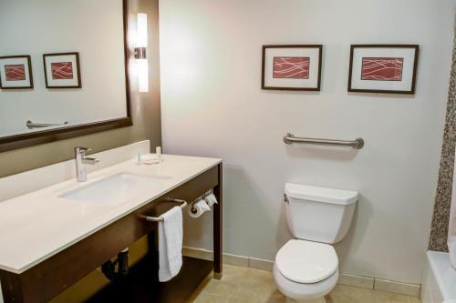 Comfort Inn & Suites Near Universal - North Hollywood – Burbank Photo