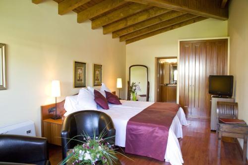 Habitación Doble Superior con chimenea y acceso al spa Hotel Del Lago 14