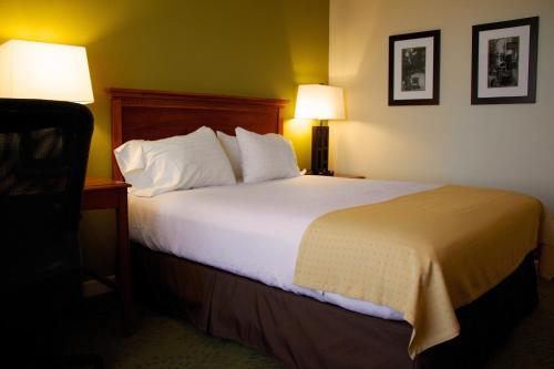Holiday Inn Athens - Athens, GA 30603