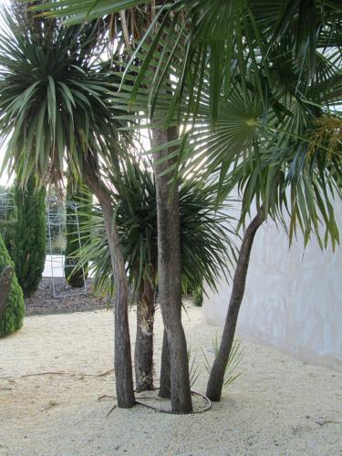 Double Room Villa Nazules Hípica Spa 7