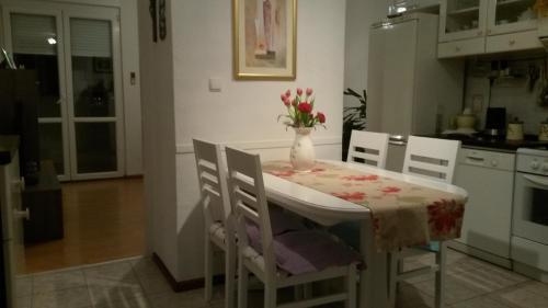 Apartment Trstenik