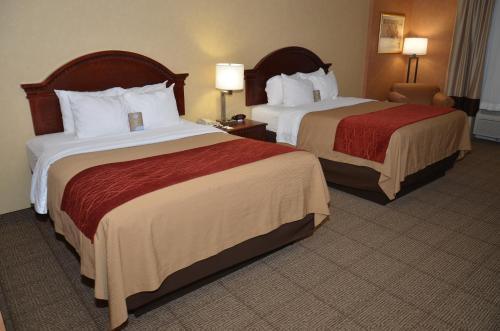 Comfort Inn Near Walden Galleria Mall- Cheektowaga Photo