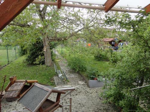 Chez Jpzen Nowicki