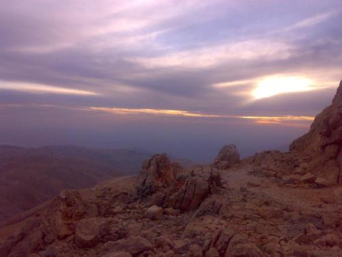 Nemrut Dağı Işik Pansi̇on, Karadut