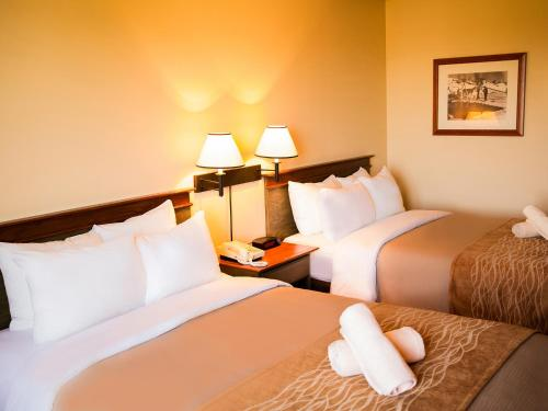 Comfort Inn & Suites Mont-Tremblant Photo