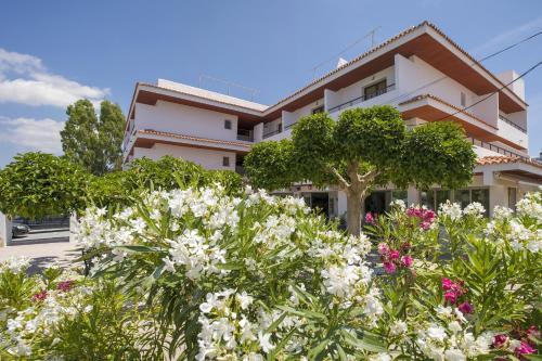 Hotel Bahía Playa 5