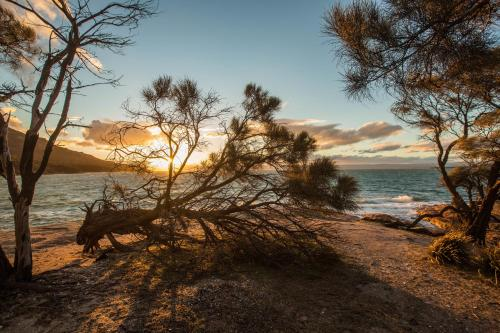 Freycinet Lodge - 13 of 57