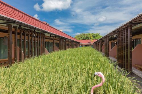 Nai Na Resort & Spa