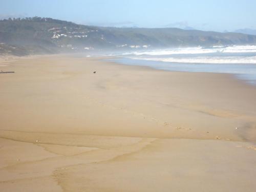 103 The Dunes Photo