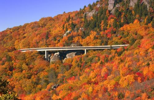 Hampton Inn Asheville-Tunnel Road in Asheville