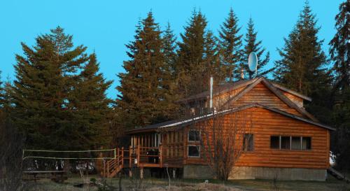 Bear Den Vacation Home - Anchor Point, AK 99556