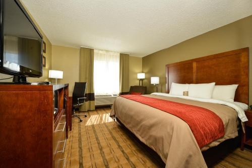 Comfort Inn & Suites Coralville - Coralville, IA 52241