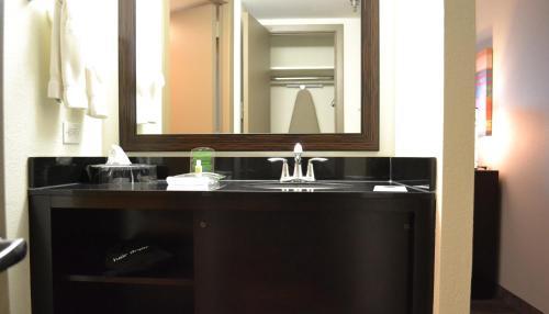 Holiday Inn Houston S - Nrg Area - Med Ctr - Houston, TX 77054