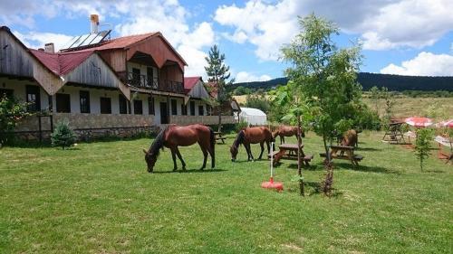 Daday Baris Atli Turizm Dogal Yasam Ciftligi, Çömlekçiler