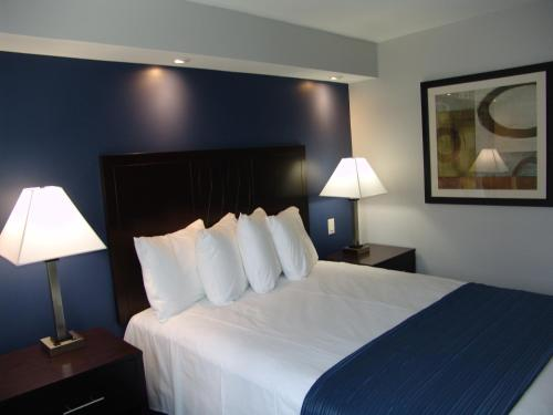 Quality Inn & Suites Downtown Photo
