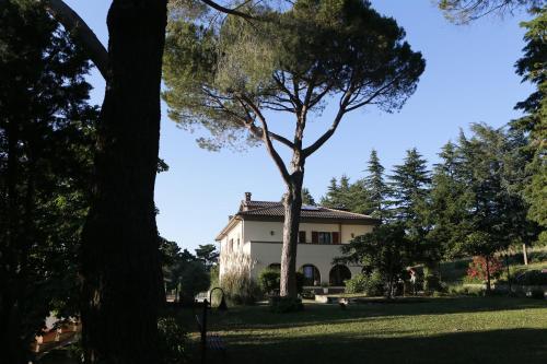 Villa Degli Ulivi