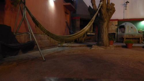 Punto Urbano Hostel Photo