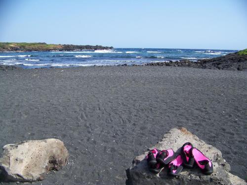 Sea Mountain - Naalehu, HI 96777