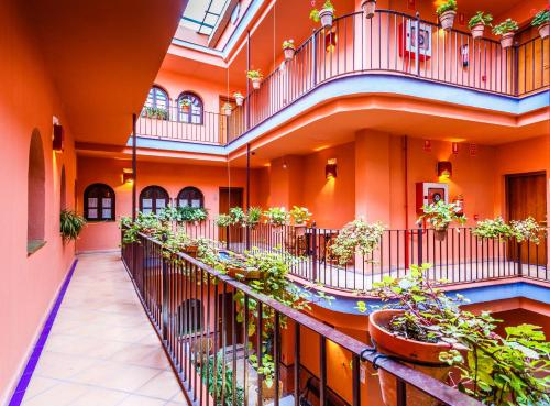 Patio de La Alameda photo 13