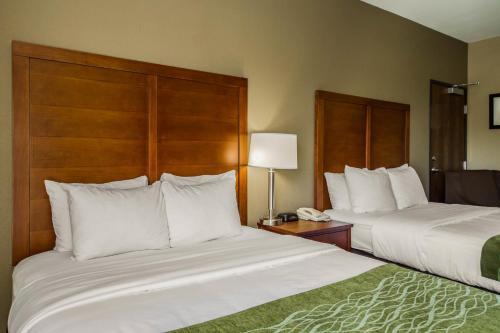 Comfort Inn & Suites Sacramento – University Area Photo