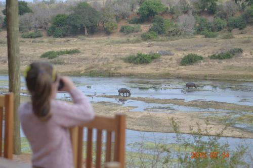 Getaway Bush Photo