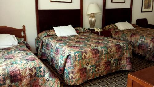 Executive Inn & Suites Photo