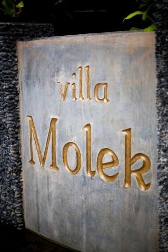 Villa Molek photo 1