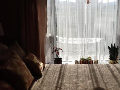 Vintage Merlot Bed and Breakfast Photo