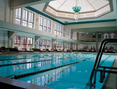 Los angeles athletic club hotel review california travel - Indoor swimming pools in los angeles ca ...