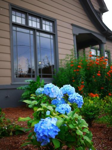 Hydrangea Inn Photo