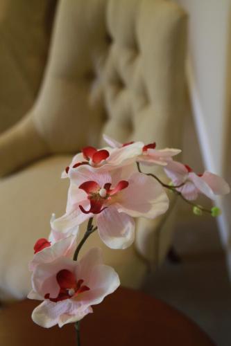 Hotel Intersur Recoleta photo 26