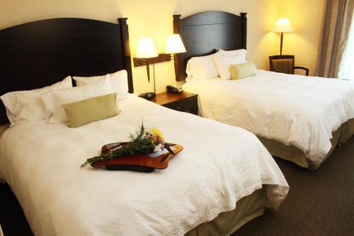 Hampton Inn & Suites by Hilton Moncton in Moncton