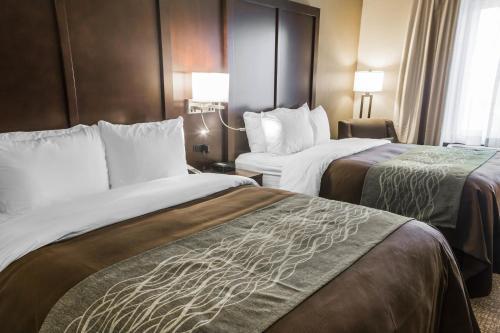 Comfort Inn & Suites Pharr/McAllen Photo