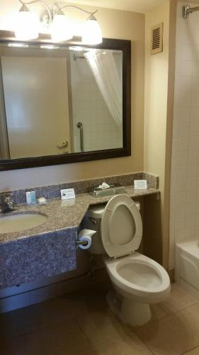 Comfort Inn 290/NW photo 5