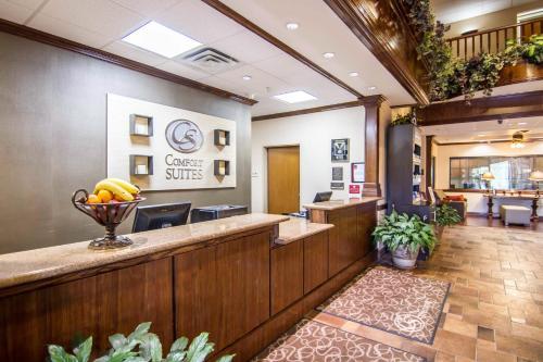 Comfort Suites Marshall Photo