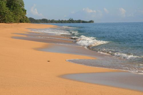 Bluff Beach Retreat Photo