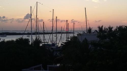 Marina Paraíso, Isla Mujeres