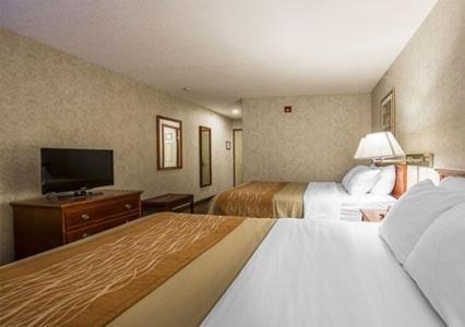 Comfort Inn Lethbridge - Lethbridge, AB T1K 7T5