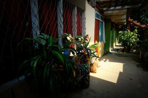 Villa Hermosa Photo