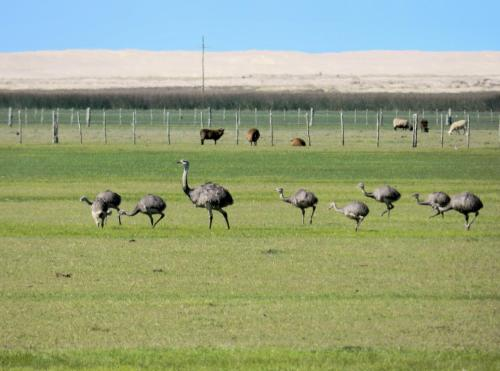 Aldeia Santuario das Aves Photo