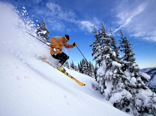 Oferta especial - Habitación Doble con 2 forfaits para la estación de esquí y acceso al spa Hotel Del Lago 10