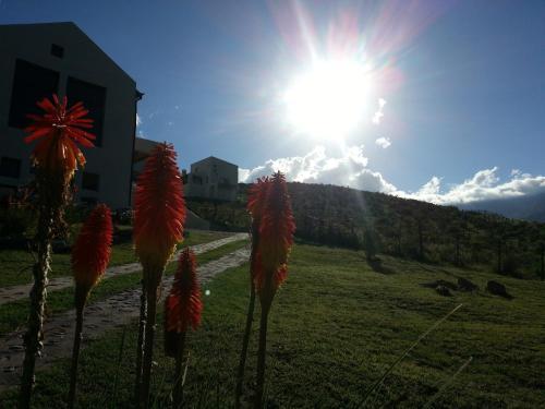 Cabañas Altos de Tafi Photo