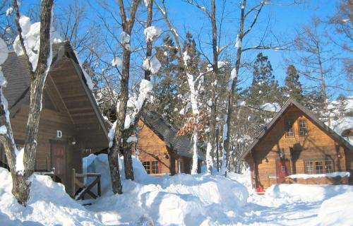 Hakuba Brownie Cottage & Condominium
